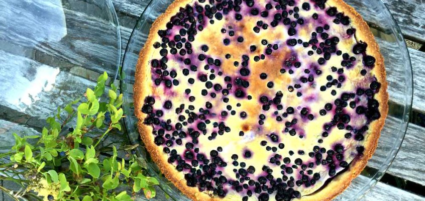 Mustikkapiirakka: God, gammeldags, finsk blåbærpai