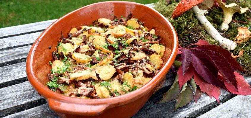 Finferli e patate al forno: Ovnsbakte kantareller