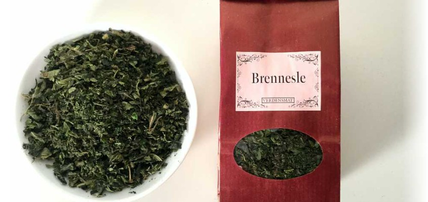 Brennesle